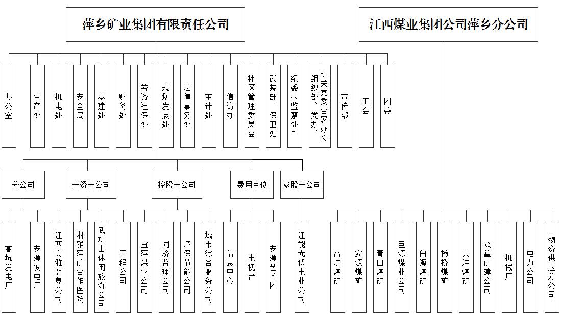 萍乡矿业集团公司组织结构